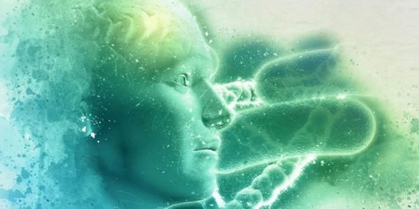 Good-Intellect-Good-Mind-Ayurveda