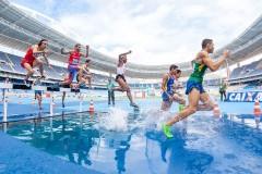 Ayurveda-Sports-Medicine